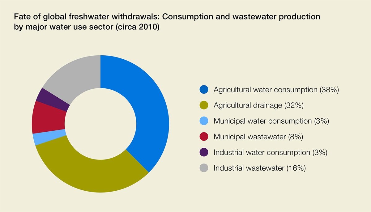 UN Water report graphic on water use