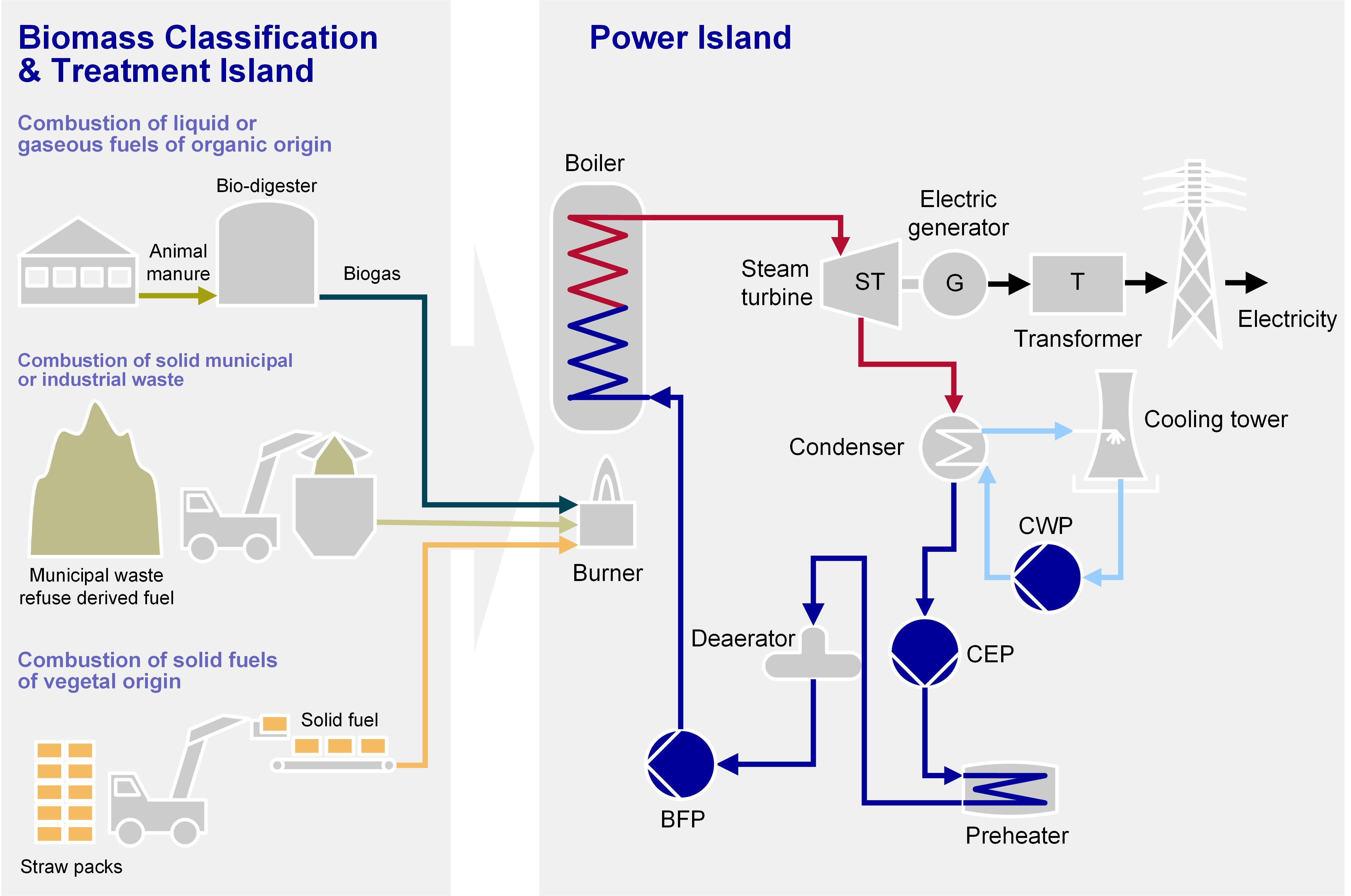 Biomass Power Plant Process